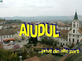 AIUDUL