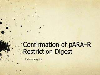 Confirmation of pARA–R Restriction Digest
