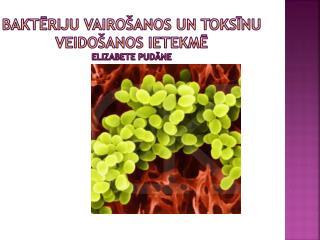 Baktēriju vairošanos un toksīnu veidošanos ietekmē Elizabete  Pudāne