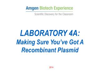 LABORATORY 4A: Making Sure You've Got A Recombinant Plasmid