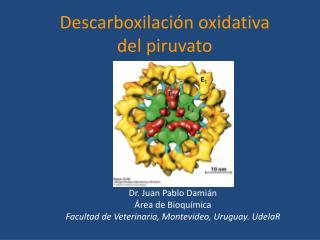Dr. Juan Pablo Damián Área de Bioquímica Facultad  de Veterinaria, Montevideo, Uruguay . UdelaR