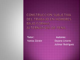 Construcción subjetiva del trabajo en hombres bajo formas alternativas de pena
