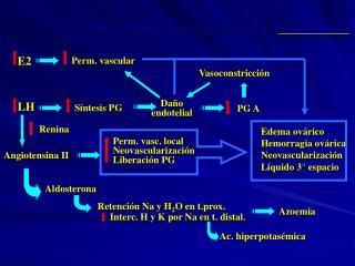Síndrome de hiperestimulación ovárica ____________