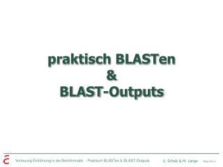 praktisch BLASTen  &  BLAST-Outputs