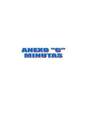 """ANEXO """"C"""" MINUTAS"""