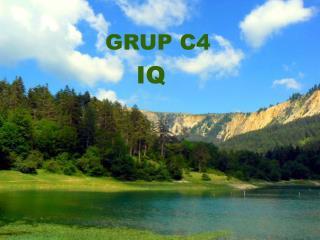 GRUP C4