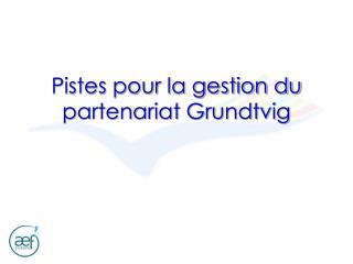 Pistes pour la gestion du partenariat Grundtvig
