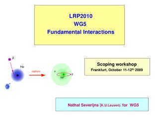 LRP2010 WG5  Fundamental Interactions