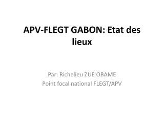 APV-FLEGT GABON: Etat des lieux