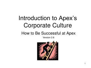 Introduction to Apex's Corporate Culture