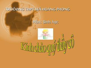 TRÖÔØNG THPT LEÂ HOÀNG PHONG