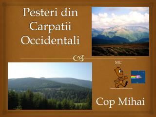 Pesteri  din  Carpatii Occidentali