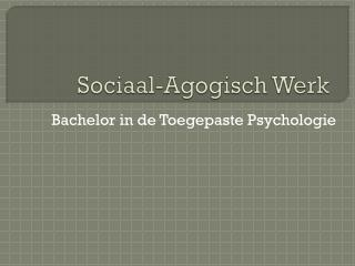 Sociaal-Agogisch  Werk