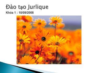 Đào tạo Jurlique Khóa  1 : 10/09/2008