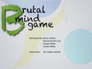 Developed  by: Axner  Anders Hammarström Lisa Howard Mike Landin Niklas