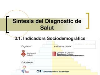 Síntesis del Diagnòstic de Salut