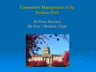 Community Management of the  Diabetic Foot Dr Fiona Strachan Dr Gray's Hospital, Elgin