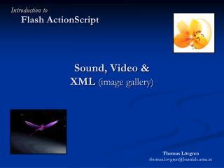 Sound, Video &  XML  (image gallery)