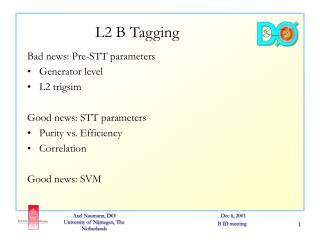 L2 B Tagging