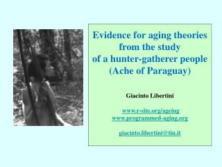 Evidence for aging theories from the study of a hunter-gatherer people (Ache of Paraguay)