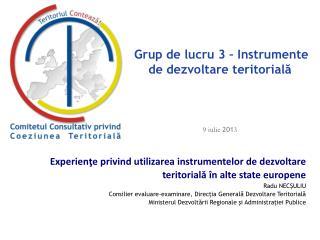 Grup de lucru 3 – Instrumente de dezvoltare teritorială 9 iulie  201 3