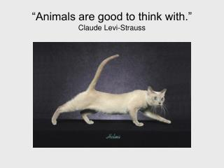"""Animals are good to think with."" Claude Levi-Strauss"