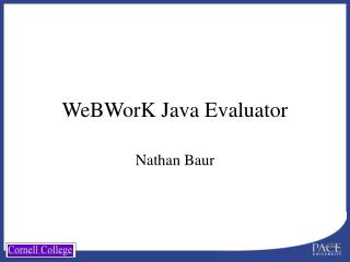 WeBWorK Java Evaluator
