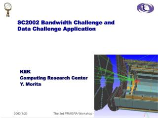 SC2002 Bandwidth Challenge and Data Challenge Application