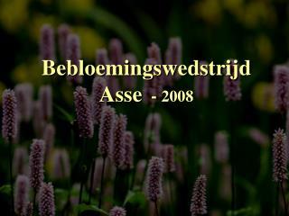 Bebloemingswedstrijd Asse   -  2008