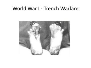 World War I - Trench Warfare
