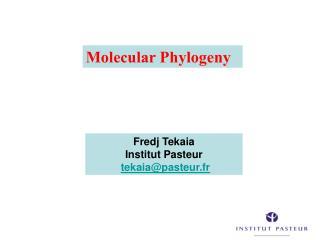 Fredj Tekaia Institut Pasteur  tekaiapasteur.fr