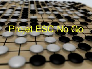 Projet ESC No Go