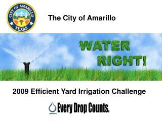 The City of Amarillo