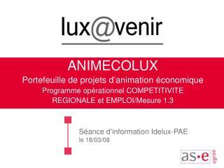Séance d'information Idelux-PAE le 18/03/08