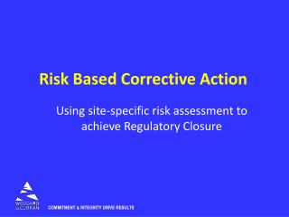 Risk Based Corrective Action