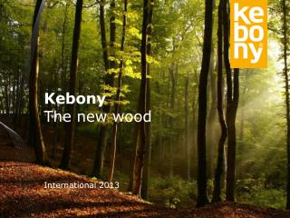 Kebony The new wood International 2013
