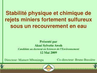 Stabilité physique et chimique de rejets miniers fortement sulfureux sous un recouvrement en eau