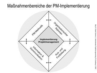 Maßnahmenbereiche der PM-Implementierung