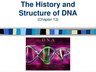 The  History and Structure  of DNA (Chapter  13)