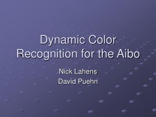 Dynamic Color Recognition for the Aibo