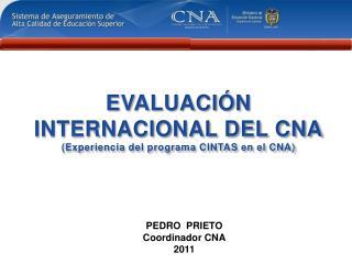 EVALUACIÓN INTERNACIONAL DEL CNA (Experiencia del programa CINTAS en el CNA)