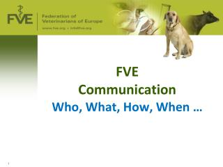 FVE  Communication  Who, What, How, When …