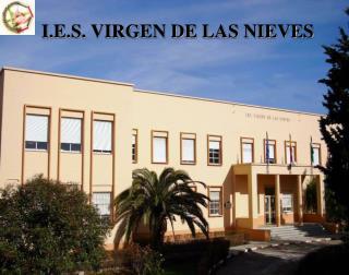 I.E.S. VIRGEN DE LAS NIEVES