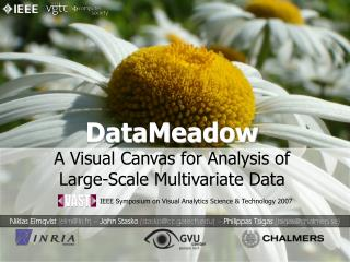 DataMeadow A Visual Canvas for Analysis of Large-Scale Multivariate Data