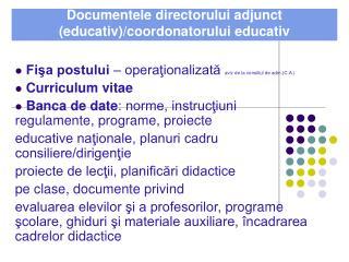 Documentele  directorului adjunct (educativ)/coordonatorului educativ