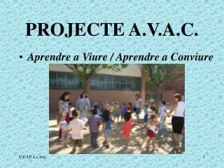PROJECTE A.V.A.C.