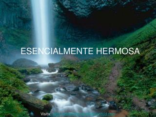 ESENCIALMENTE HERMOSA