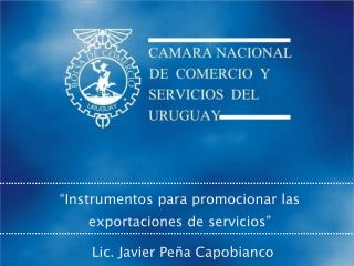 """""""Instrumentos para promocionar las exportaciones de servicios"""""""