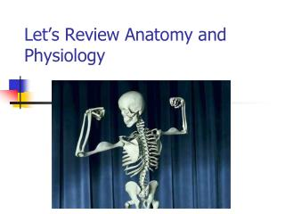 Let�s Review Anatomy and Physiology