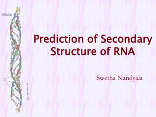Prediction of Secondary Structure of RNA